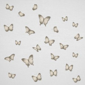 Grey butterfly wall stickers